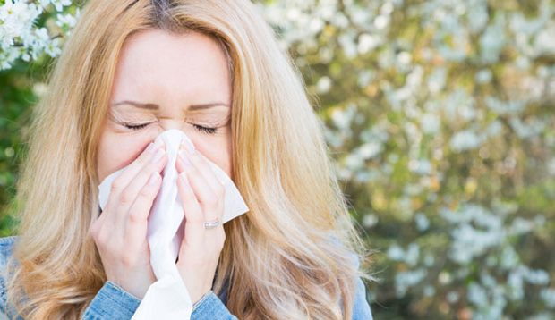 алергии, спирулина, ринит