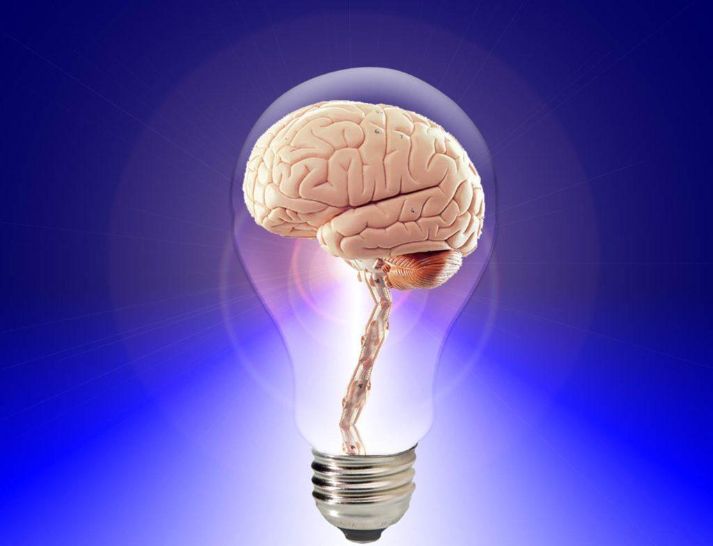 brain and spirulina